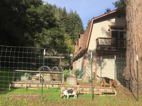 Haus in Santa Cruz Mountains