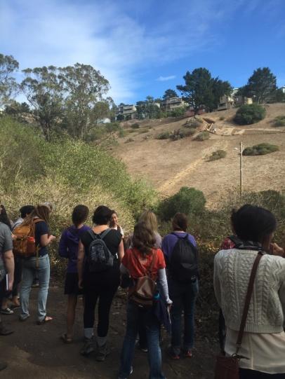 Kräuterwanderung in San Francisco