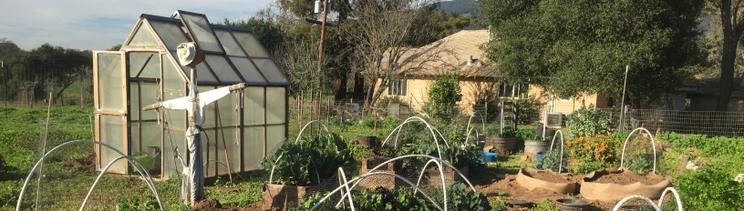 Gewächshaus im Selbstversorger-Garten