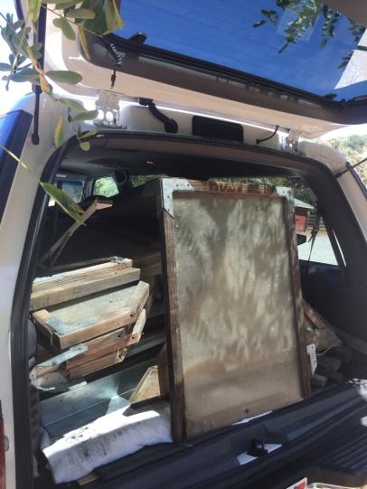 Gewächshaus im Auto