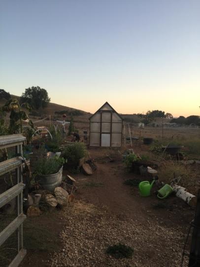 Pünktlich zum Sonnenuntergang ist das Gewächshaus fertig