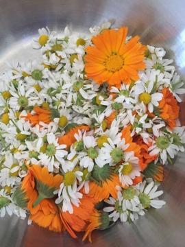 Kamillenblüten mit Ringelblumen