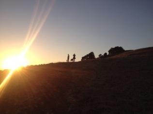 Sonnenuntergang in Trumpland