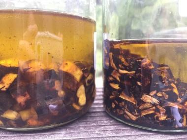 Beinwellöl aus frischer und getrockneter Wurzel