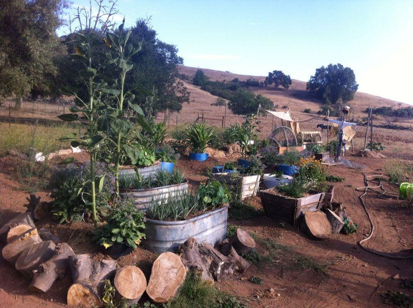 Garten eins in Kalifornien