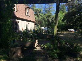 Garten zwei in Kalifornien