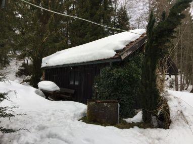Schuppen im Winter
